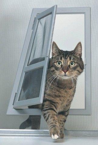 Such a classy cat door to put inside your front door! Idea to use for dog door