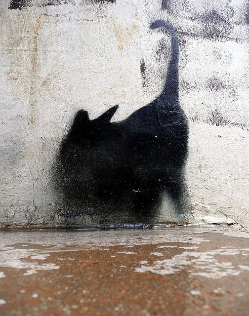 The cat was there, or only her shadow. One can be as good as the other, at the right time