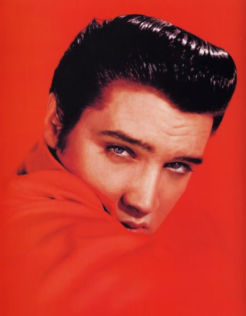 Elvis: celebrity photo, (have this pic more than once but can't get enough of EP)