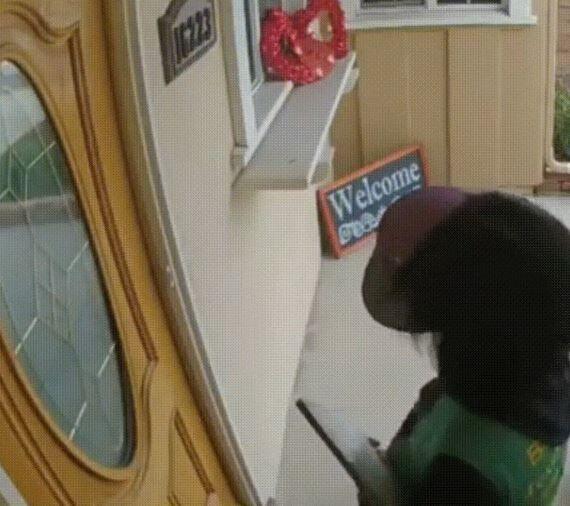Este perro ve que llama alguien a la puerta pidiendo que se asocie a una causa, y lo echa a patadas.