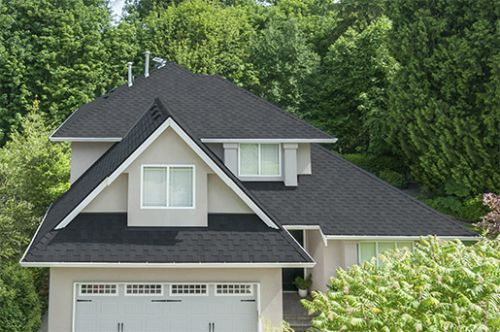 malarkey windsor asphalt shingles - midnight black - top roofing contractor