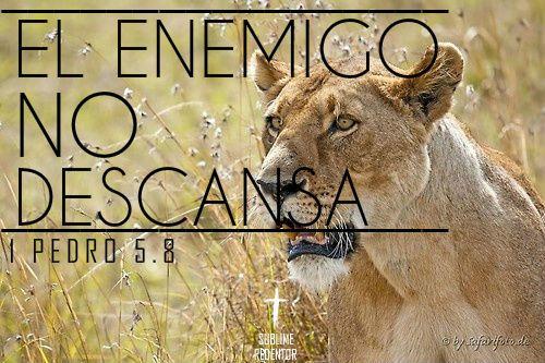 Sed sobrios, y velad; porque vuestro adversario el diablo, como león rugiente, anda alrededor buscando a quien devorar .- 1 Pedro 5:8
