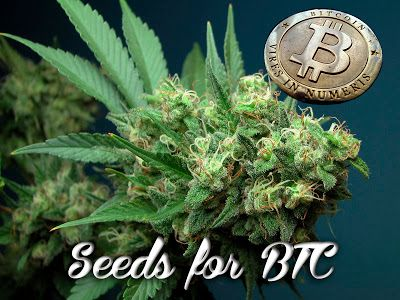 Tutorial on how to get bitcoin, and where to spend them anonymously on the best seeds available.