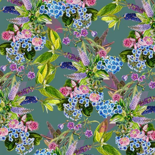 Chatham Is. Forget-me-not II, New Zealand Flora Series, Limited Edition, 3 sizes from NZ$145