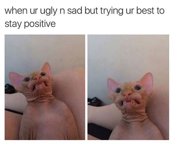 When you're ugly and sad but trying your best to stay positive.