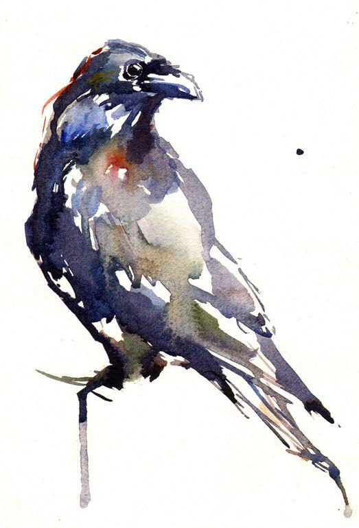 """Saatchi Online Artist: Lucy Newton; Watercolor, Painting """"Raven"""""""