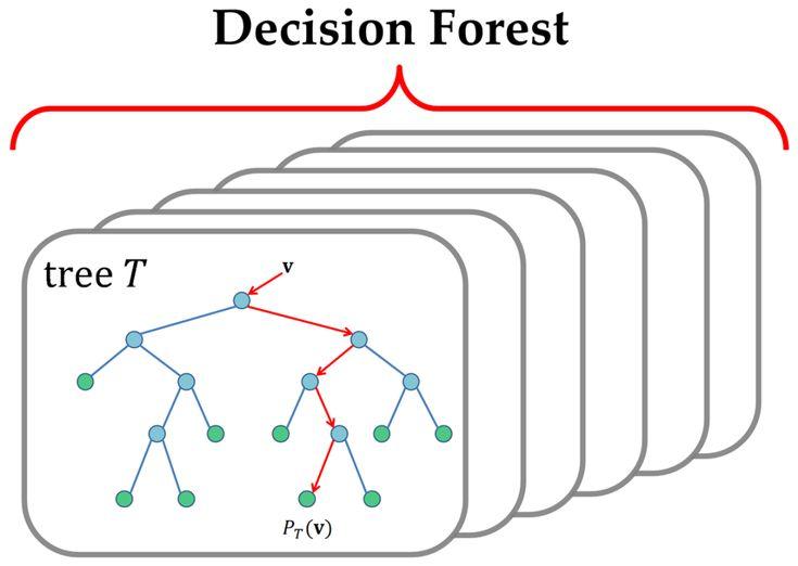The  Best Decision Tree Ideas On   Kaplan Decision