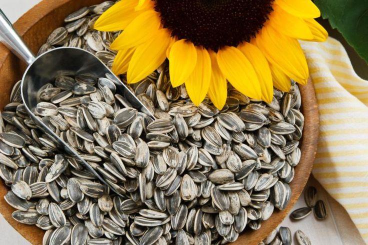 Beneficios de las semillas de girasol 2