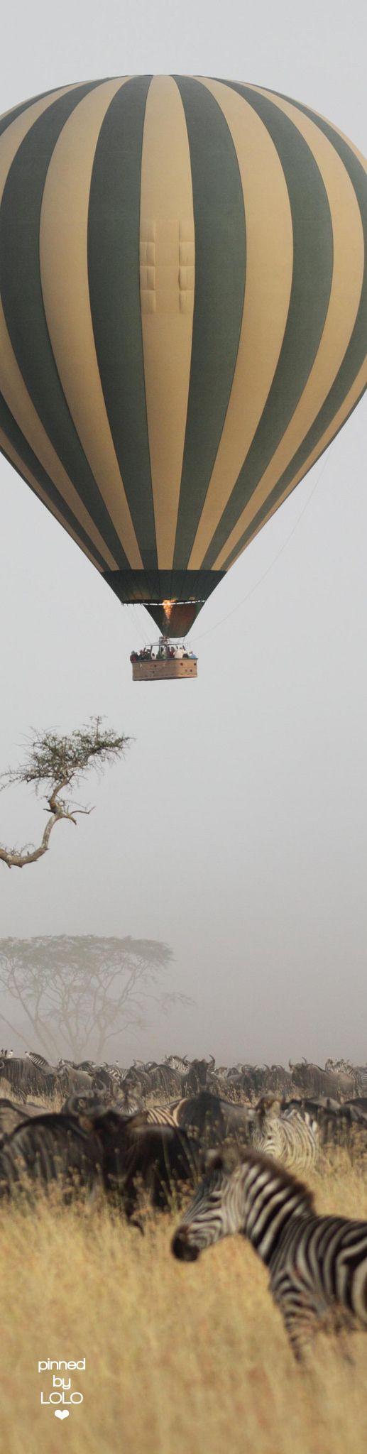 Serengeti |