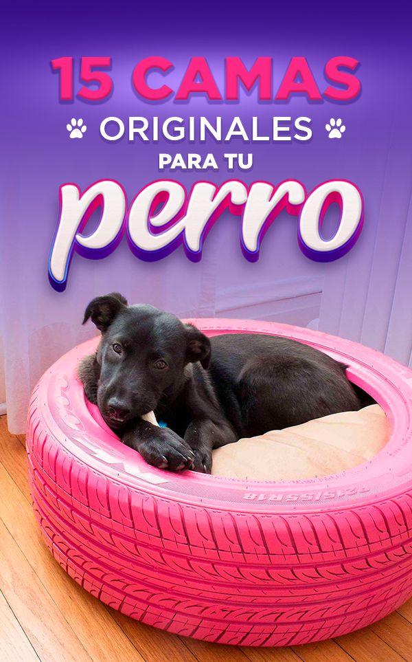 Camas para perrito Animals, Pet Beds, Bed Ideas, Christmas Door, Animales, Animaux, Animal, Animais