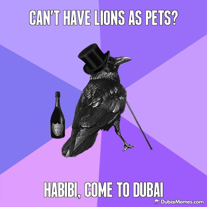 Learn Arabic in The United Arab Emirates (UAE) | Go Overseas