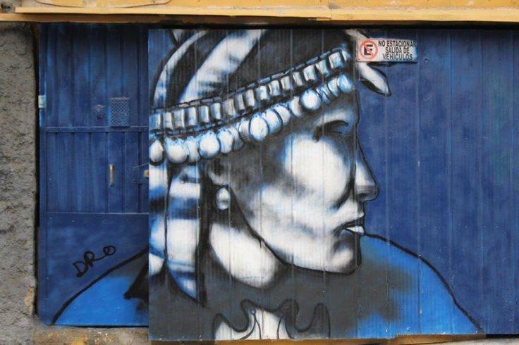 Mapuche (Valparaíso)