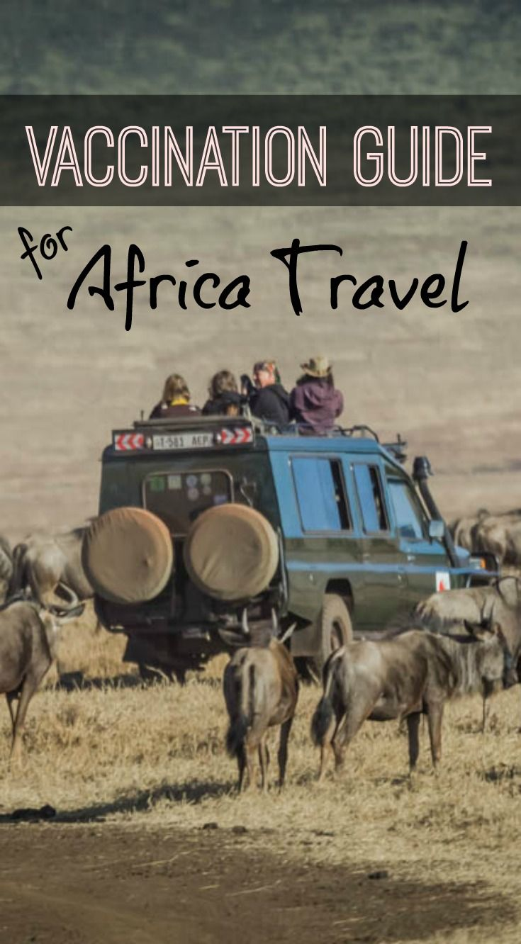Ultimate Vaccination Guide for Africa Travel. You've decided to book a trip to…