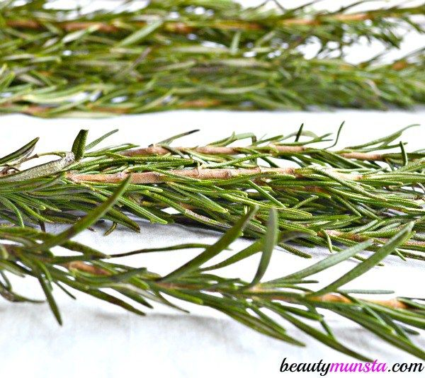 Rosemary essential oil is extracted from rosemary leaves and it's great for stimulating hair growth and regrowing bald patches.