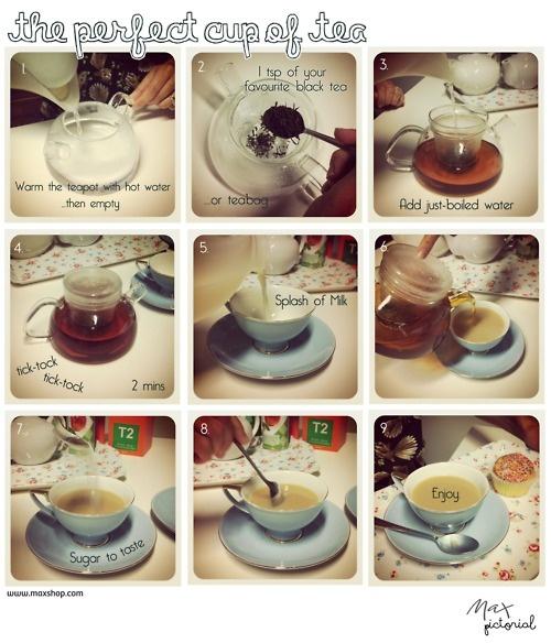 Max Pictorial... The Perfect Cup of Tea www.maxshop.com