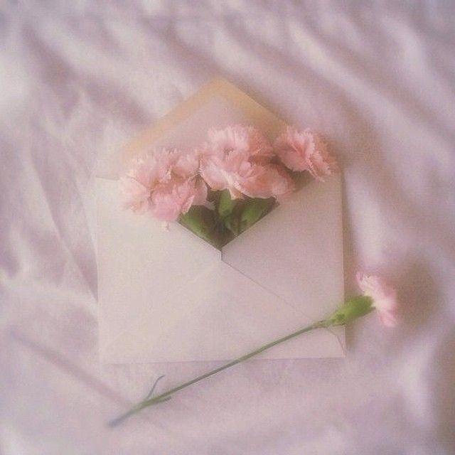 Vintage Rose Foundonweheartit Mood Fashion Style Chic Happy Roses Mail Pink Aesthetic Baby Pink Aesthetic Pink Terimakasih sudah berkunjung, sampai ketemu lagi di postingan lainnya. baby pink aesthetic