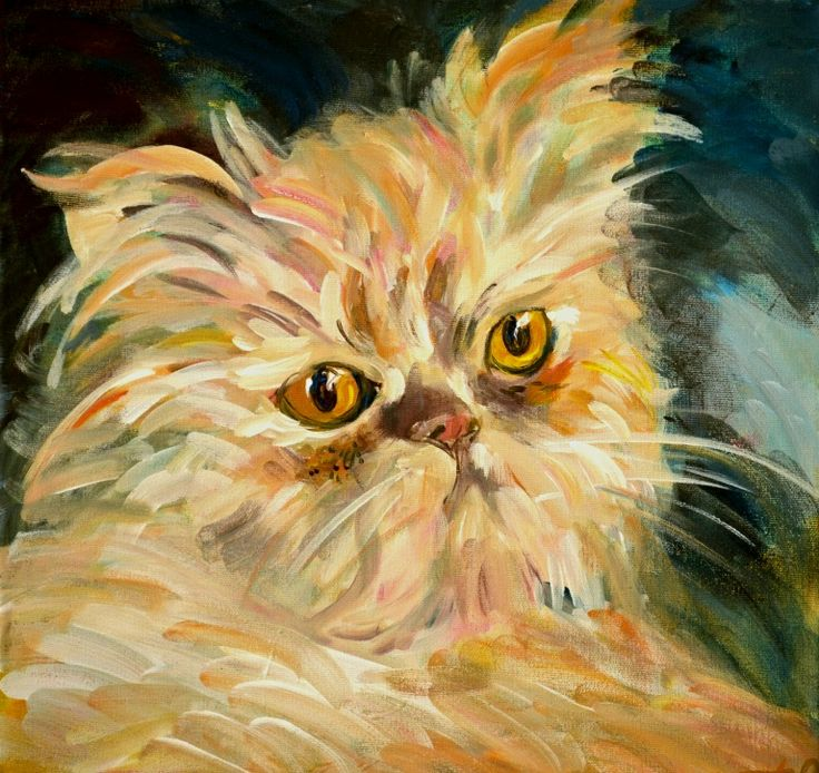 acrilic on canvas: Yellow kitten 40x40