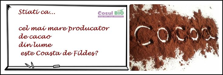 Stiati ca cel mai mare producator de cacao din lume este Coasta de Fildes?