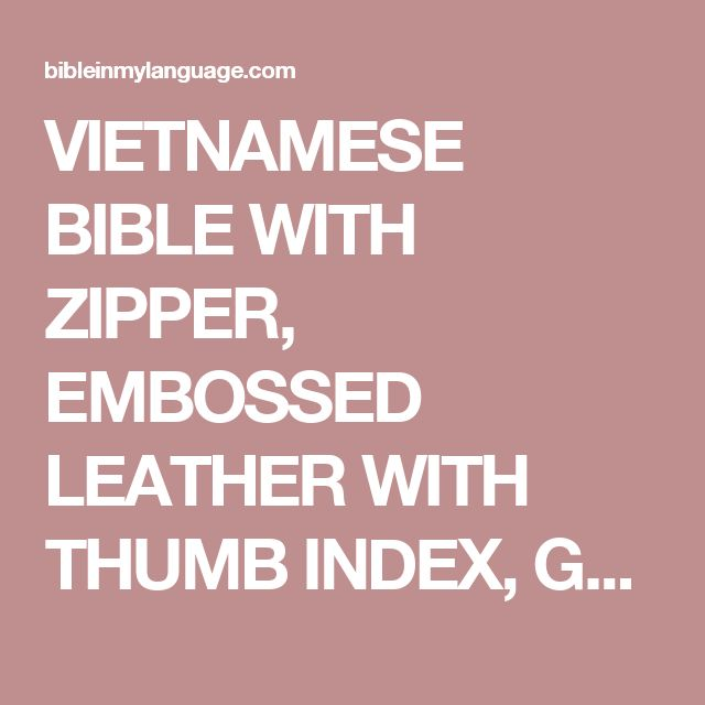 VIETNAMESE BIBLE WITH ZIPPER, EMBOSSED LEATHER WITH THUMB INDEX, GOLD EDGES / REVISED VIETNAMESE VERSION / KINH THANH – BAN TRUYEN THONG HIEU DINH - bibleinmylanguage