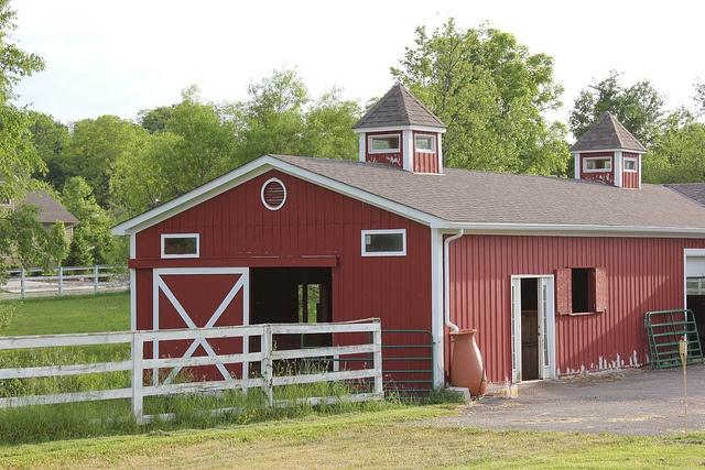 Our busy little barn.