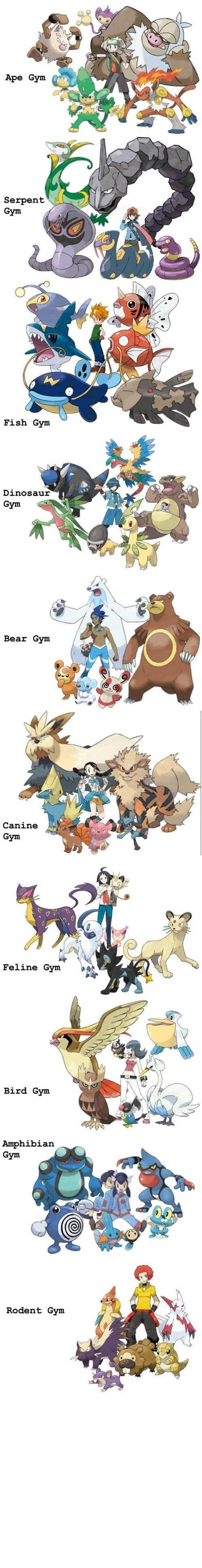 The only thing that makes me mad about this post is that the fish gym leader is a character from Digimon....HE DOESN'T EVEN GO HERE