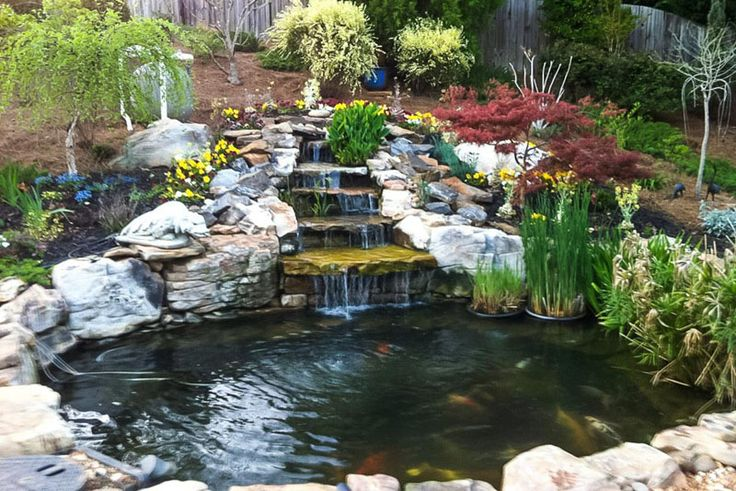 55 Best Koi Ponds Images On Pinterest Koi Ponds