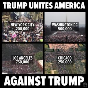 The best memes, tweets and jokes about Donald Trump's presidential inauguration.: Trump Unites America Against Trump