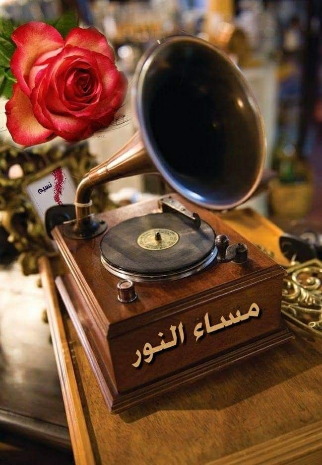 Tall Green Spot Print Tie Neck Top Tie Neck Tops Good Morning Arabic Good Evening