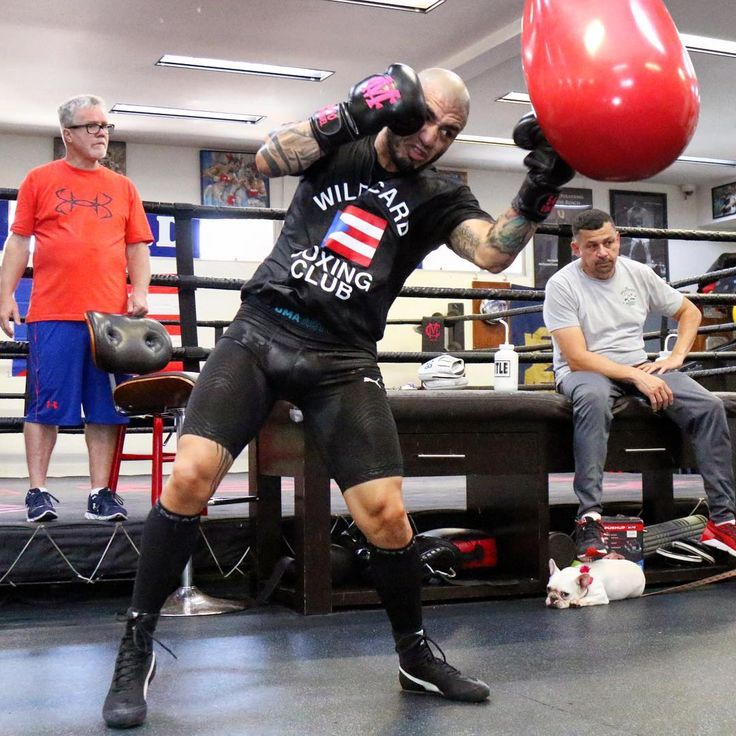 Miguel Cotto explains why he has 'no regrets' as he winds down Hall of Fame career LINK IN BIO http://www.boxingnewsonline.net/miguel-cotto-explains-why-he-has-no-regrets-as-he-winds-down-hall-of-fame-career/ #boxing #BoxingNews #CottoKamegai #WARCotto #🇵🇷