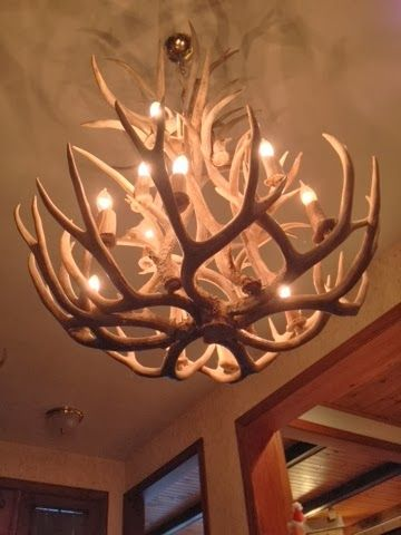 Antlers For A Chandelier
