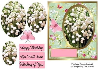 very pretty 3 D card front, that has snow drops and butterflies on, has 3 labels so it can be used for many reasons.  Happy Birthday.  Get Well Soon.  Thinking of you.  but you can also use your own.  Very easy to make.