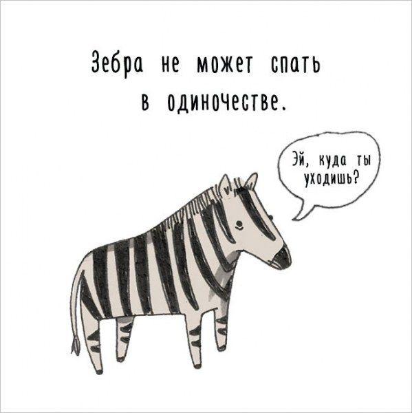 Интересные факты о животных в забавных рисунках (17 картинок)