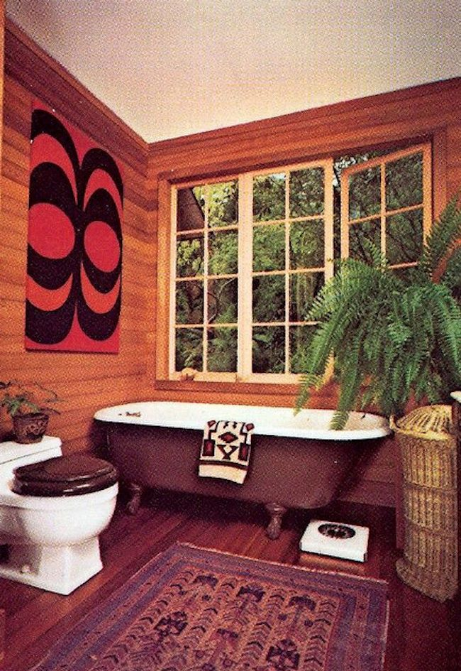 1970s home decor | house plants 1970s 11 Houseplants of the 1970s (ferns and tongues)