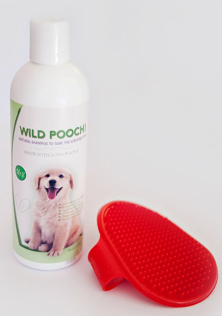 Natural Dog Shampoo and Bath Brush. Gentle Pet Shampoo With Natural Oils, WILD POOCH! * See this great image  : Dog Grooming
