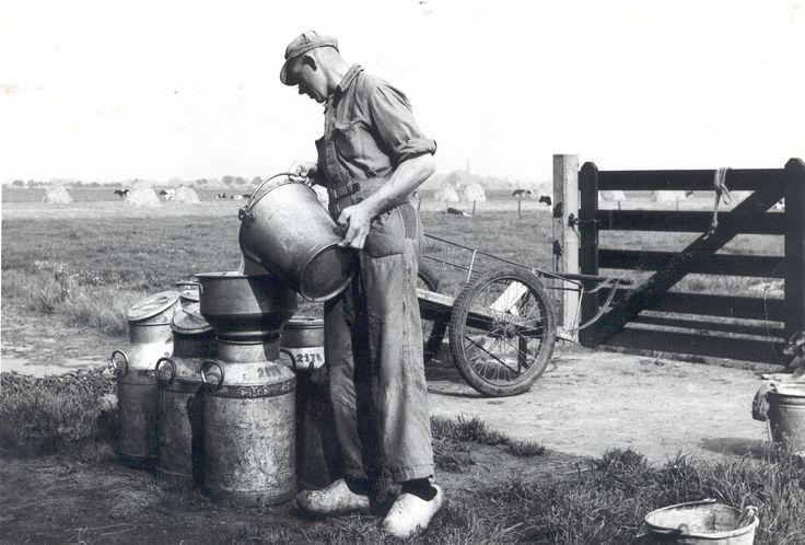 Met verschillende gekleurde banden en merktekens zodat de melkfabriek de juiste melkbussen bij de juiste boerderij terugbracht.