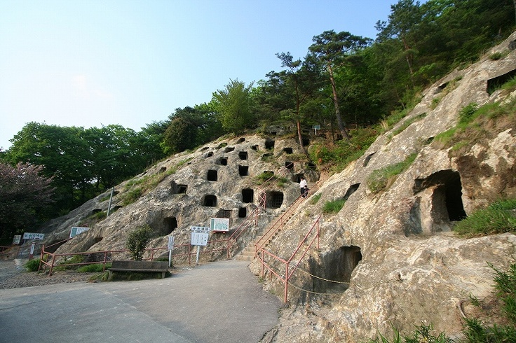 Rock Cut Tomb in Kita Yoshimi, Honshū    Most famous rock cut tombs in Japan, with 219 holes. Luminous Moss (Schistostega pennata) lights up some holes. An underground munitions factory was dug at this site during the World War II  The Megalithic Portal and Megalith Map: