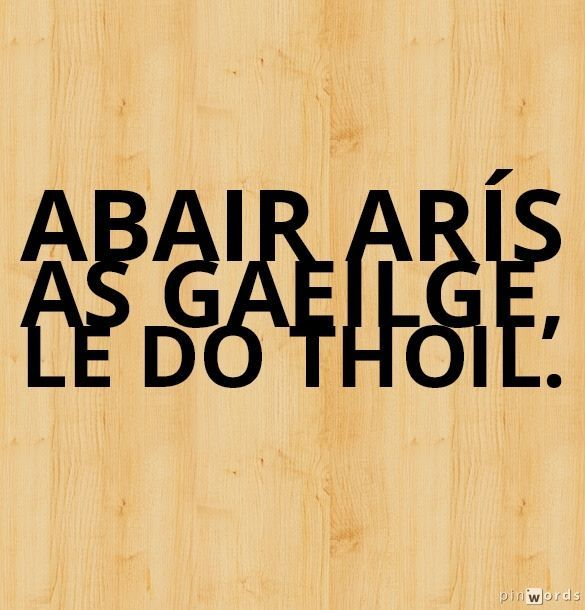 Say again in Irish, please.