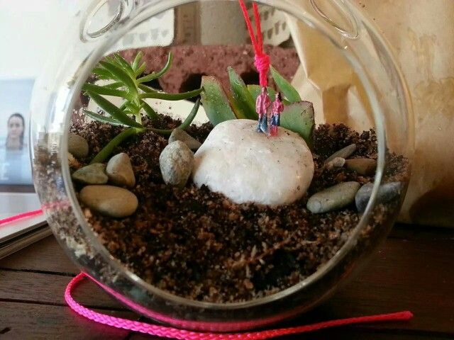 Cute little terrarium with tiny figurines exploring their new world. Directions on how to make your own terrarium here:  http://www.roandpj.com/terrariums-are-back/