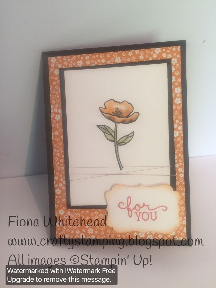 Stampin' Up! Birthday Blooms - inspired by Pinterest - I changed some things www.craftystamping.blogspot.com