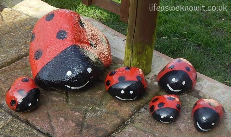 """More giant stone ladybirds - from Life (as we know it) ("""",)"""