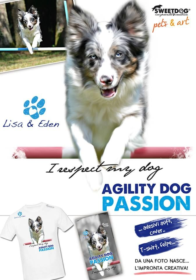 DOG: Eden (Border Collie Blue Merle) | Agility Dog Personalized T-Shirt | T-Shirt personalizzata Agility Dog | https://www.facebook.com/SweetDogStore