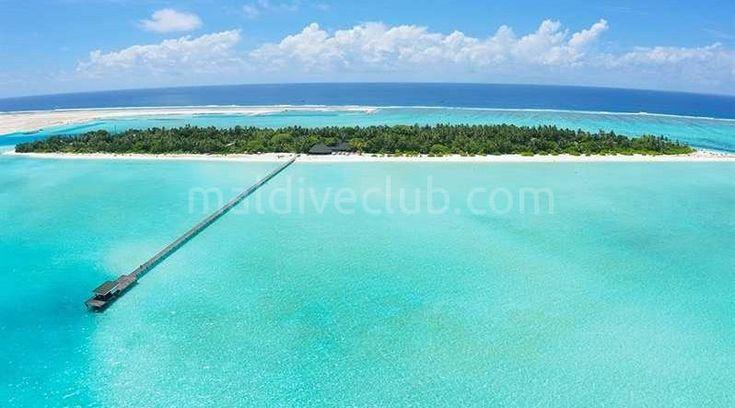 Maldivlerde ekonomik bir tatil mi istiyorsunuz? Maldiveclub olarak sizlere Holiday island'ı öneriyoruz...