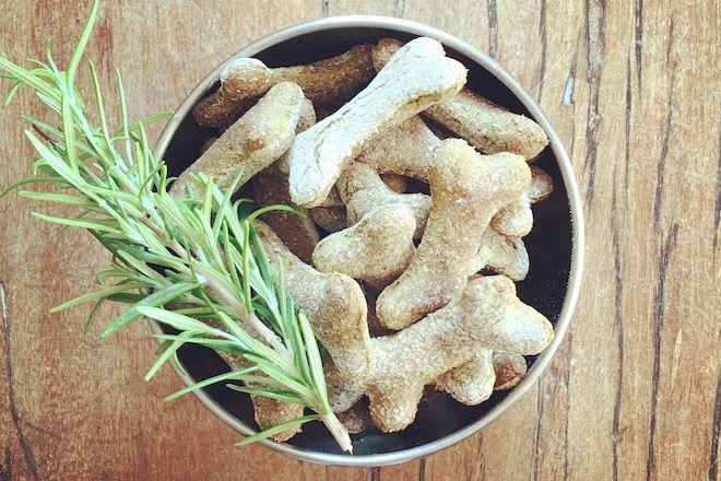 Rosmarin-Hunde-Leckerli Rezept für einen frischen Atem.