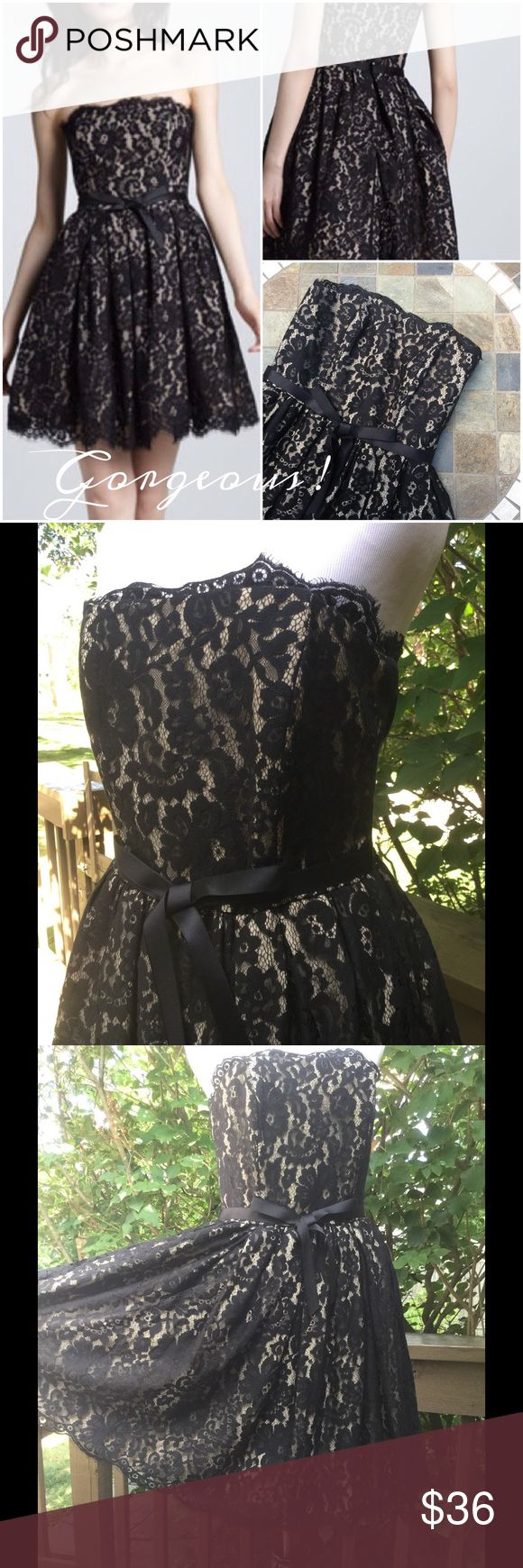 Robert Rodriguez Gorgeous Dress !  Robert Rodriguez collaboration with Neiman Marcus & Target ! Black lace over a nude dress ! Fit & flare ! Built in bra with some stays in bodice ! Scalloped hem & neckline ! Black ribbon around waist ! Hidden back zipper ! Beautifully made dress ! Worn once !  Robert Rodriguez Dresses Strapless