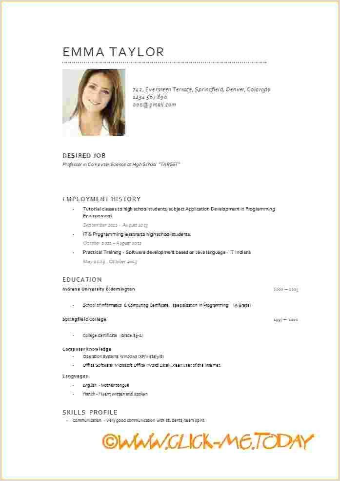 Exemple De Cv Moderne Pdf Modelos De Curriculum Vitae Curriculum Vitae Formato De Curriculum Vitae