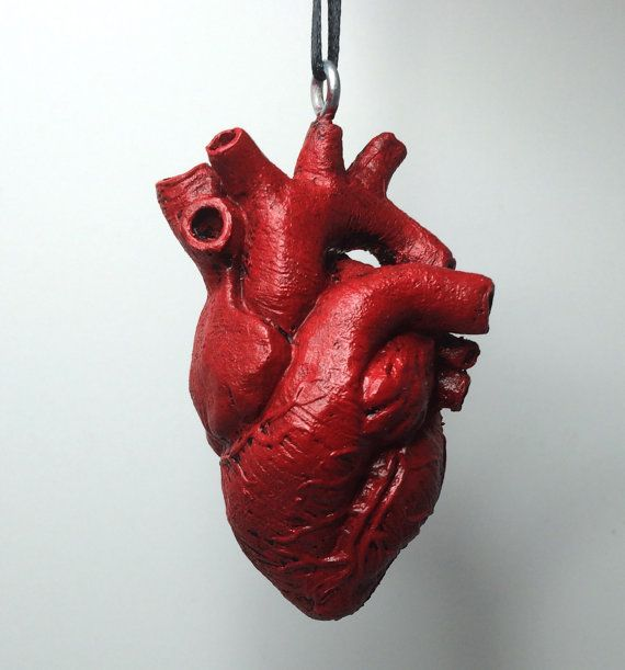 Anatomical Human Heart Ornament by Dellamorteco on Etsy