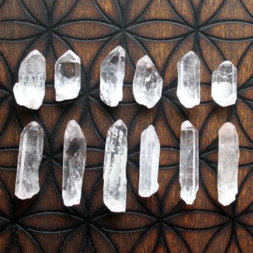 /○//☾○Keep clear quartz in your garden to restore energy to your plants ○☽\\○\