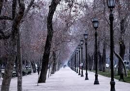 Image result for santiago de chile parque forestal