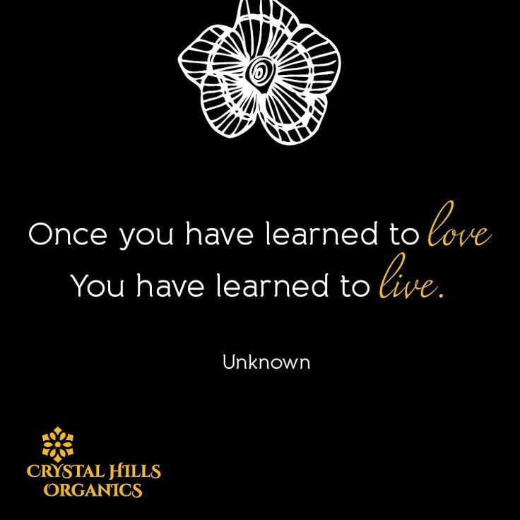 Once you have learned to love, you have learned to live.
