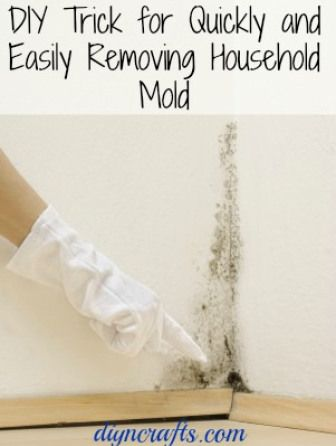 Getting rid of and preventing mould with vinegar. This will save so much time! #DIY #mould